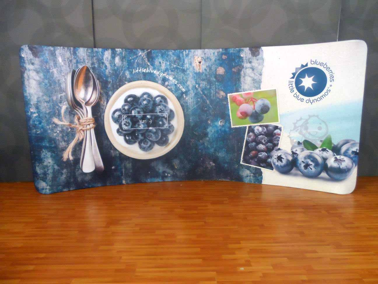 20ft curve tension fabric display picture